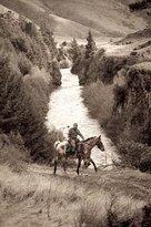 Peel Forest - Horse Trekking