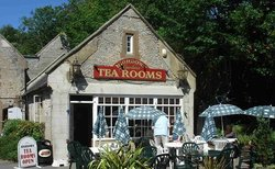 Highdown Gardens Tea Room