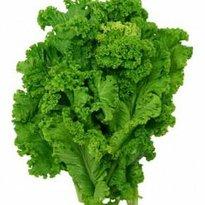Green Seed Vegan