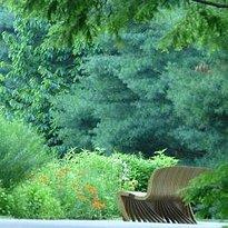 Jenkins Arboretum and Garden