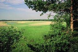 Laajalahti Nature Reserve