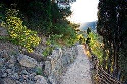 Golitsyn Path