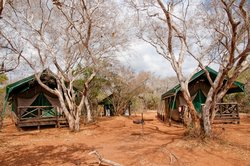 Mkuze Tented Camp