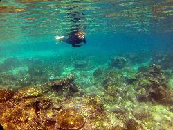 Snorkelling at Yabu Island