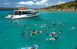 Cool Boats USVI