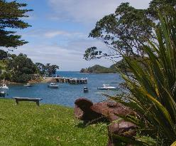 Go Great Barrier Island - Day Tours