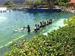 Caressing as dolphins swimby!!!! lovely