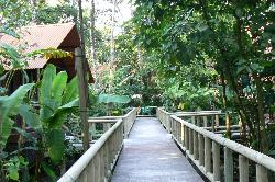 Our stay in the rain forest. Watch for the monkeys.