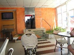 Cafe Bayrouth