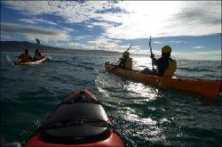 Apollo Bay Surf and Kayak