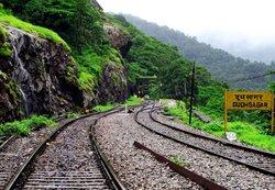 Way to waterfall from Dudhsagar railway station