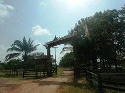 Sao Jeronimo Farm