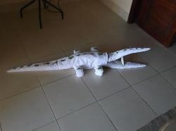 """Colin the Croc"" great towel art"