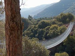 Hanging Bridge at Nesher Park
