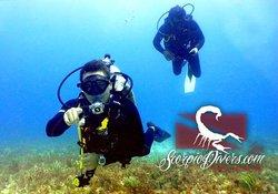 Scorpio Divers Tours