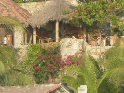 La Loma Linda: Bungalows, Yoga and Feldenkrais
