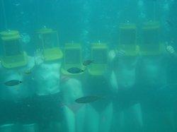 Undersea Walkers