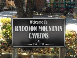 Raccoon Mountain Caverns