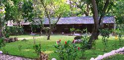 El Bosque Hotel