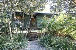 TreeHouse Retreat BnB