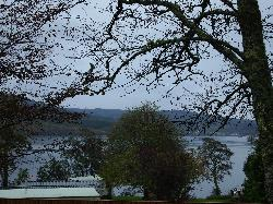 Cherry Tree view of the loch