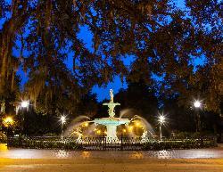 Capturing Savannah - Photography Tours