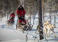 Lapland Safaris Yllas