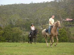Spring Creek Horse Rides