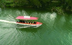 Coastal Inland Tours