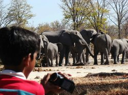 People Like Us Safaris - Day Tours