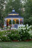 Gardens, gardens, gardens! (49527192)