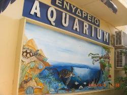 アクアワールド水族館