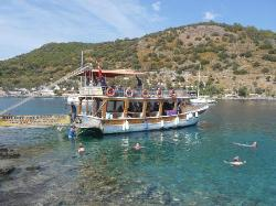 Cherry Tree Boat Tours / Day Tours
