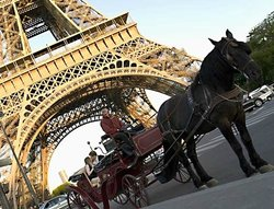 ‪Experience Paris - Private Horse and Carriage Rides‬