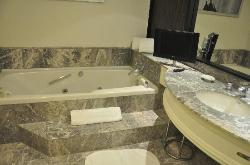 Bathroom with jacuzzi tub and TV