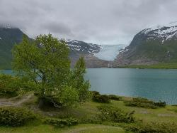 The Svartisen Glacier Austerdalsisen