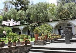 متحف دولوريس أولميدو باتينو