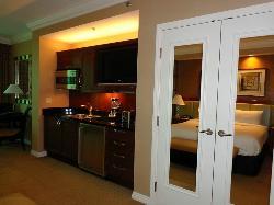mini stove, sink, fridge, double door closet