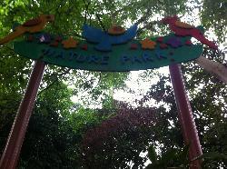 咖啡山森林保护区
