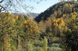 Navitat Canopy Adventures - Asheville Zipline