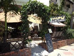 Jungle Yellow Café