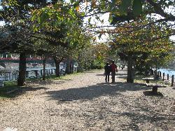 府立宇治公園