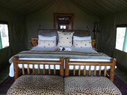 Room (tent) interior