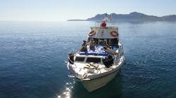 North Mallorca Charters Day Tours