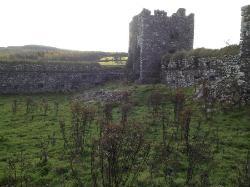 Moygara Castle