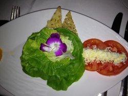 Boston bib salad