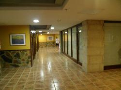 Around the hotel