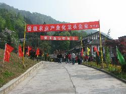 Mengding Mountain Tourist Area