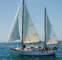 Free Spirit Sailing Adventures- Day Tours
