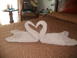 DION ARE CLEANERS TOWEL ART